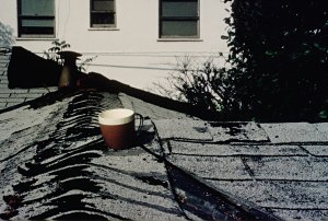 Coffee cup on roof